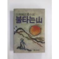 불타는 산 (김상국장편소설, 1984년초판)